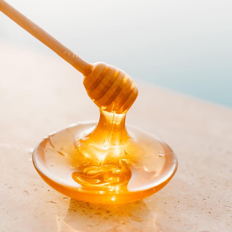 انواع مختلف عسل